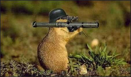 Bazooka taltsutaja siil