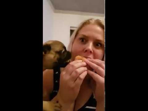 Võidu söömine