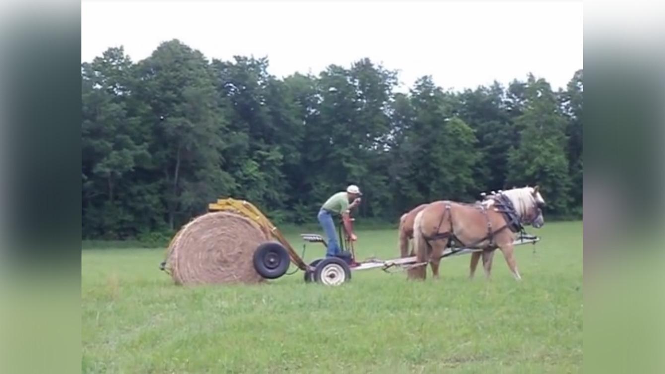Heinarulli transport hobusega