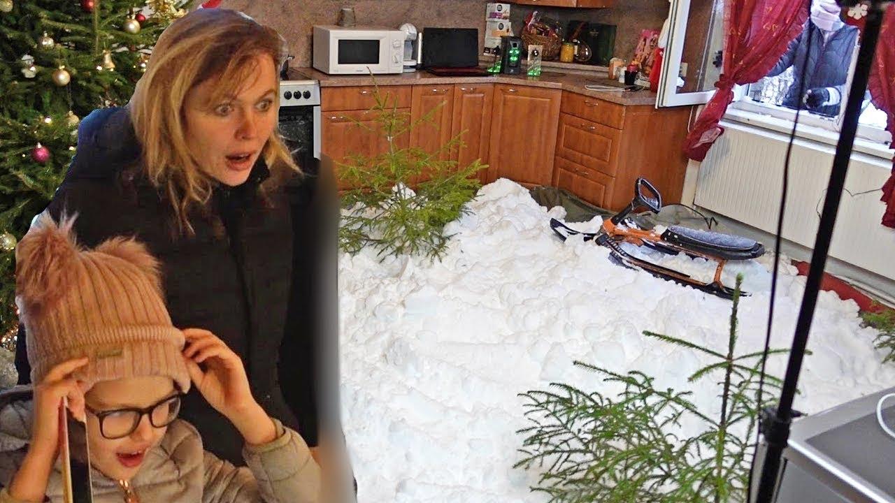 Üks Eesti kutt tassi vanemate rõõmuks jõuludeks toa lund täis