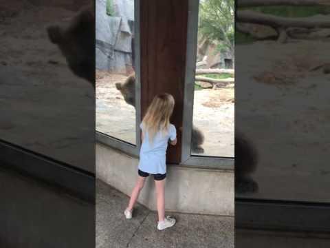 Peitusemäng karuga