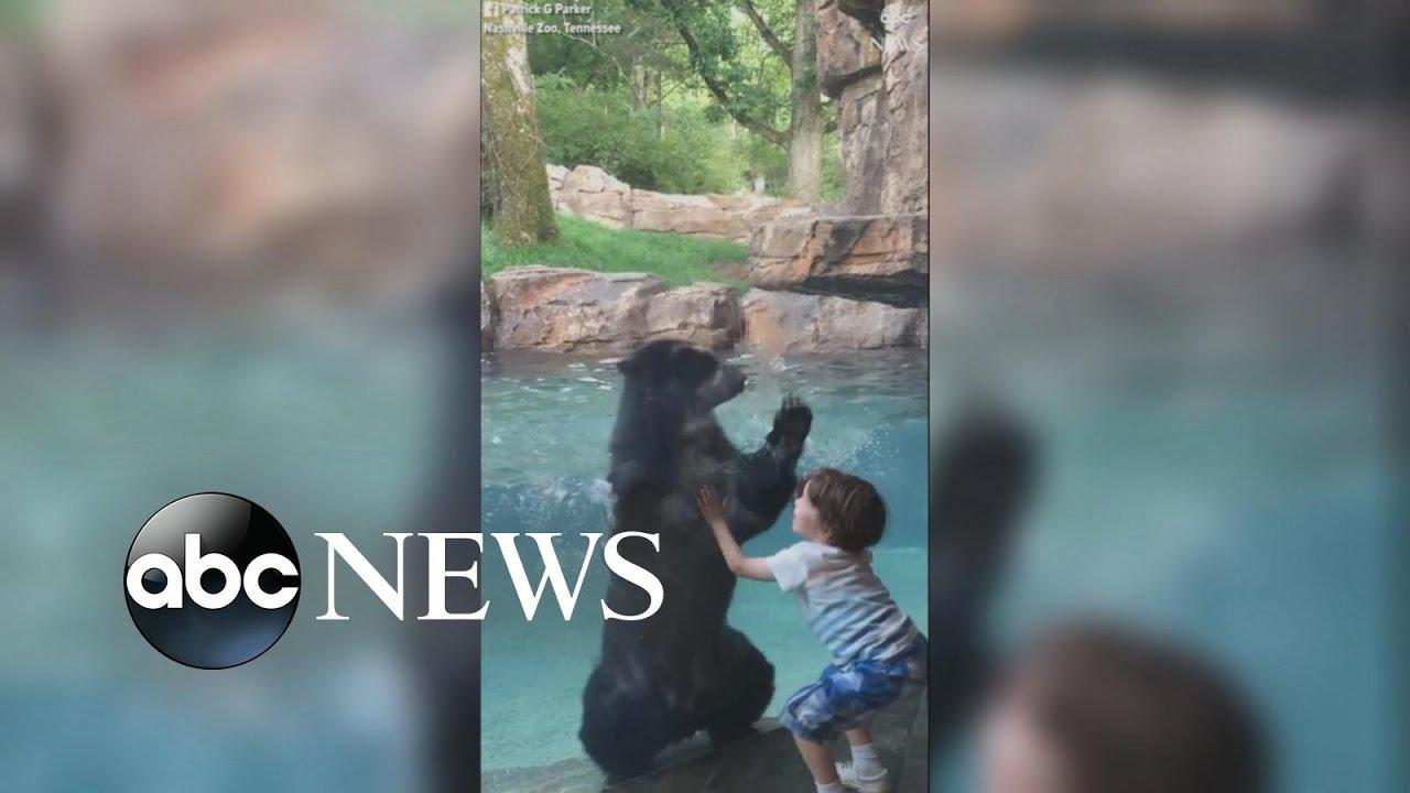 Karu ja laps võidu hüppamas