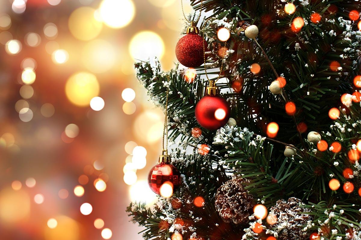 Tallinna jõulupuu jõudis täna Raekoja platsile
