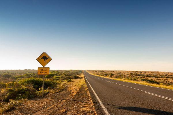 Austraalia ralli jääb ära