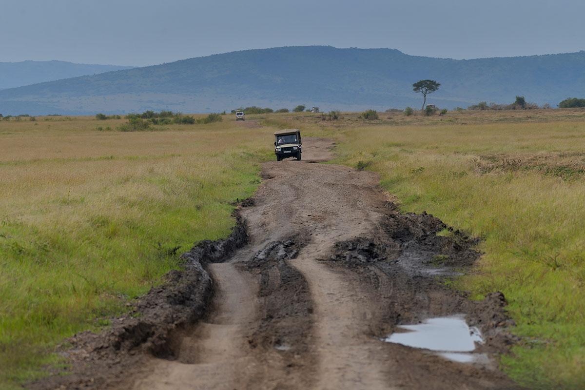 Täna algab Keenia ralli, vaata ralli ajakava