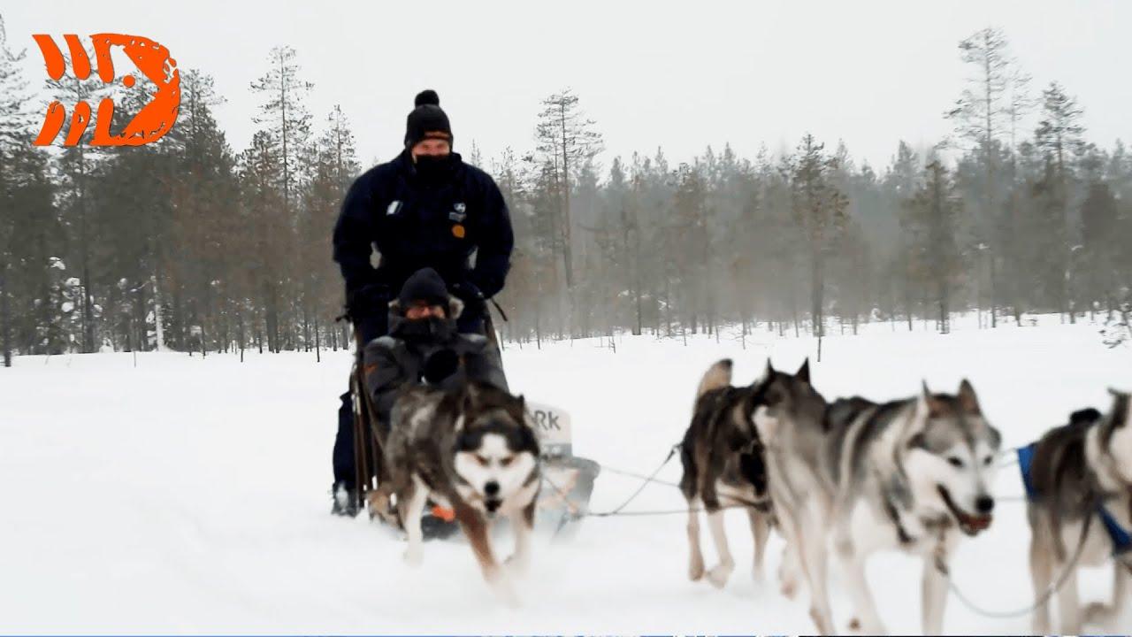 Kuidas Hyundai Motorsport valmistub Soome Artic ralliks
