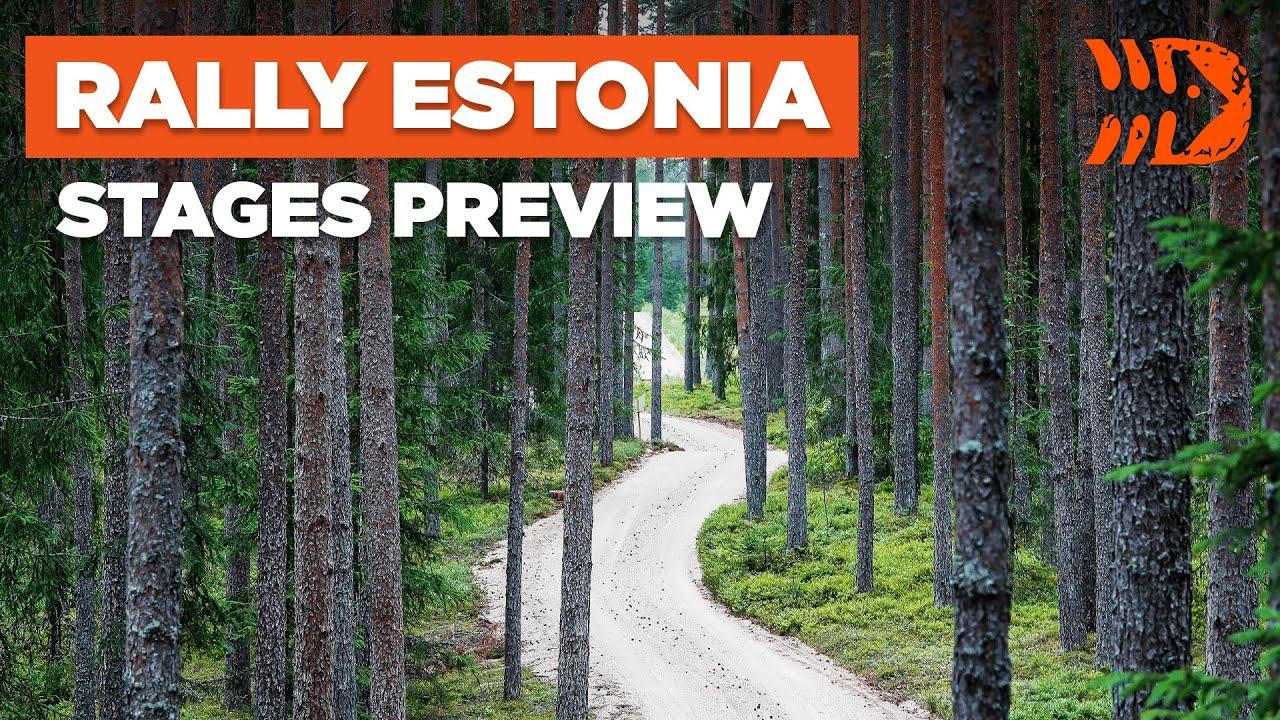 Rally Estonia 2021 kiiruskatsete eelvaade, DirtFish