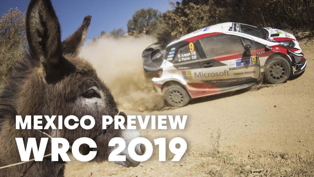 Mehhiko ralli 2019 - eelvaade, Red Bull