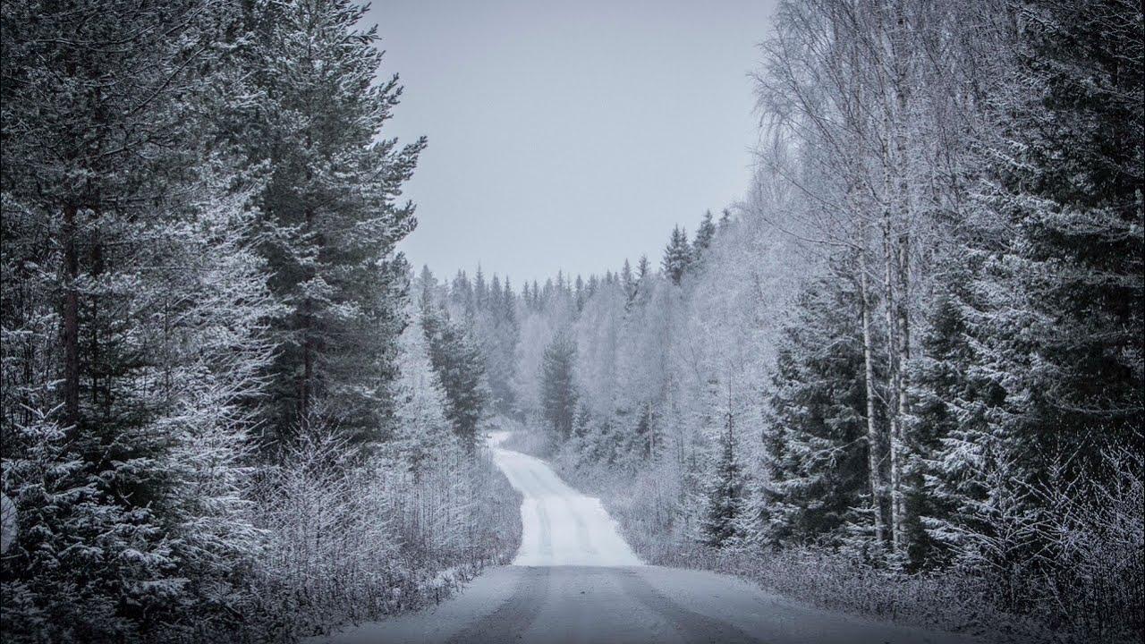 DirtFish poolne ilmaraport Rootsi ralli kiiruskatsete kohta