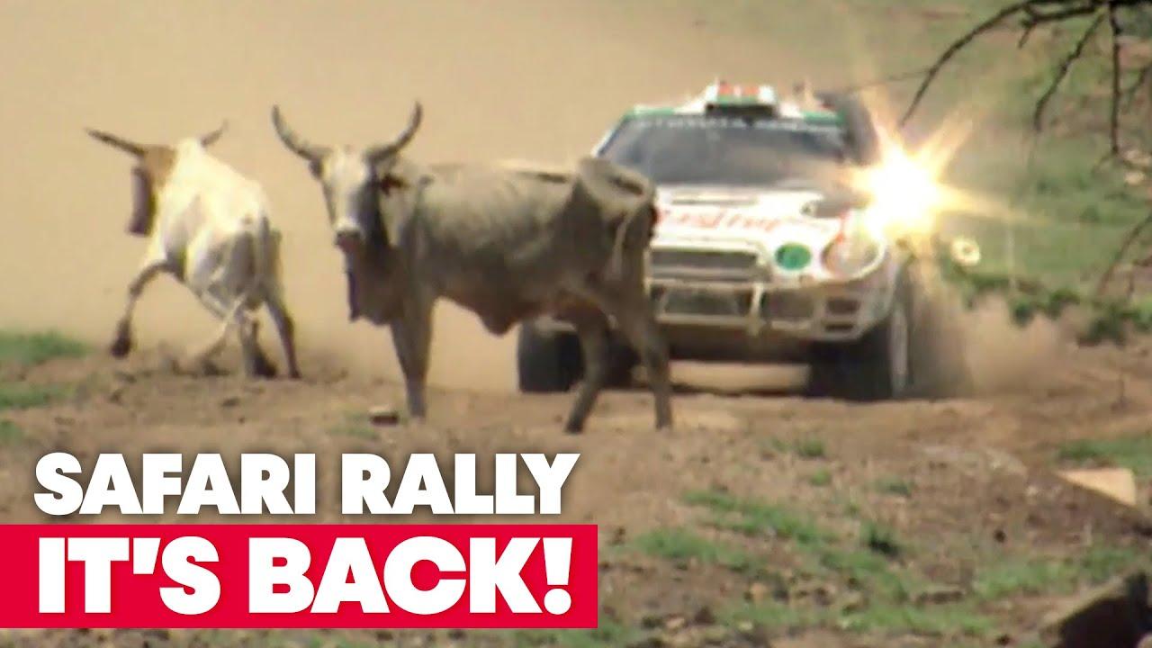 Red Bull poolne ülevaade Keenia ralli ajaloost